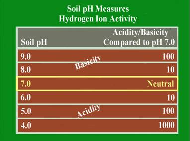 Soil Ph And Buffer Ph